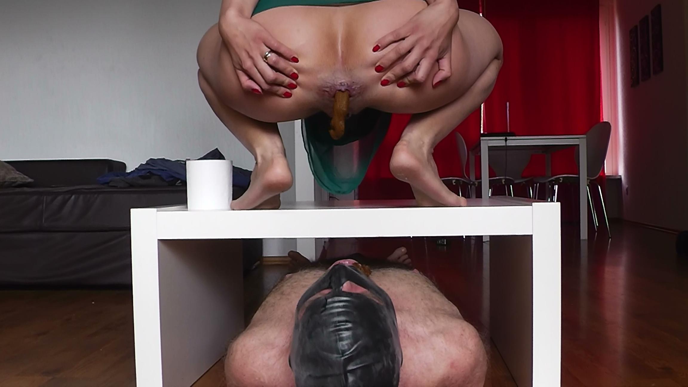 toilet-slave-humiliation-femdom-ebony-big-tit-bondage