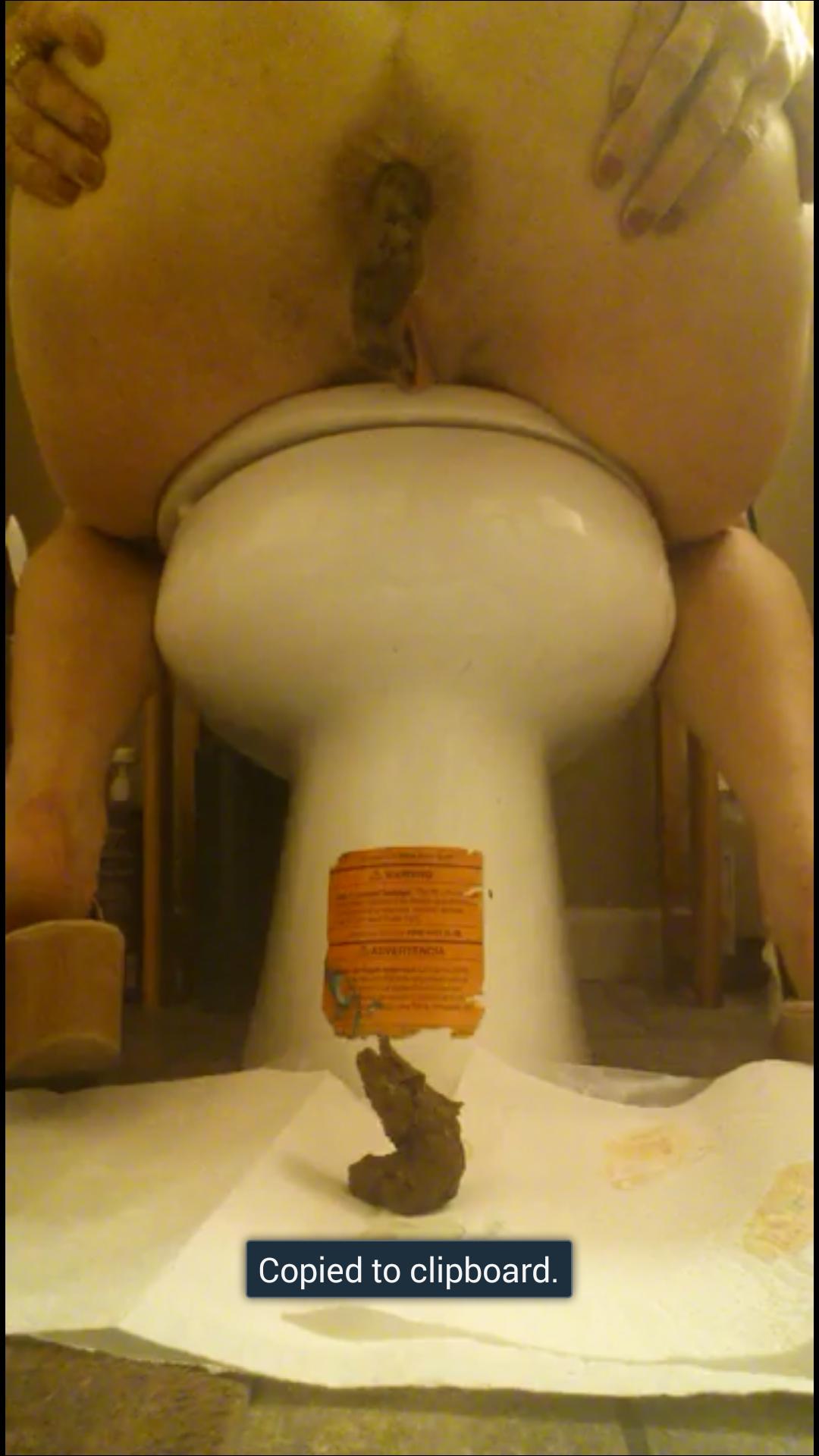 reverse toilet