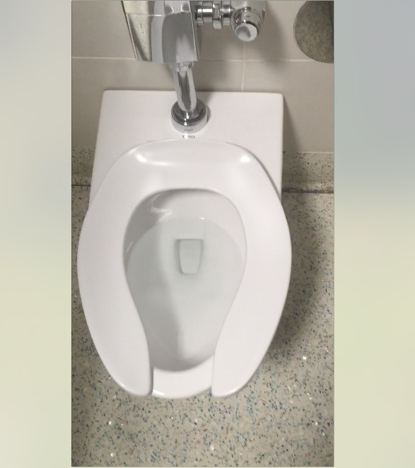 Seriously constipated on toilet and can 39 t poop scatshop - How to use the bathroom when constipated ...